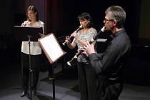 Ve středu 25. listopadu 2015 bylo Divadlo K. H. Máchy v Litoměřicích zcela zaplněno diváky. Konal se totiž tradiční koncert učitelů Základní umělecké školy Litoměřice.