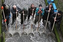 Rybaři v sobotu provedli výlov rybníka v Býčkovicích.