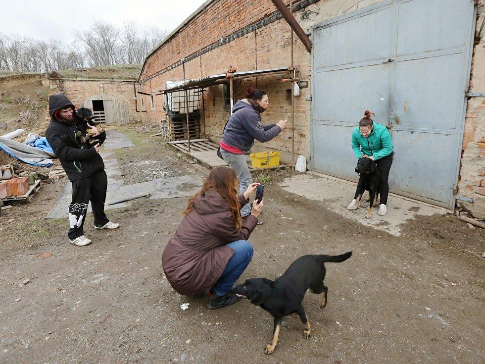Dva muži a jedna žena žijí v otřesných podmínkách v garáži v bývalých kasárnách v Terezíně. Spolu s nimi tam žije asi patnáct psů
