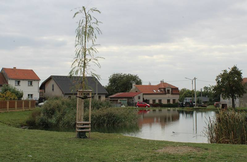 Střed Podsedic s upraveným rybníkem.