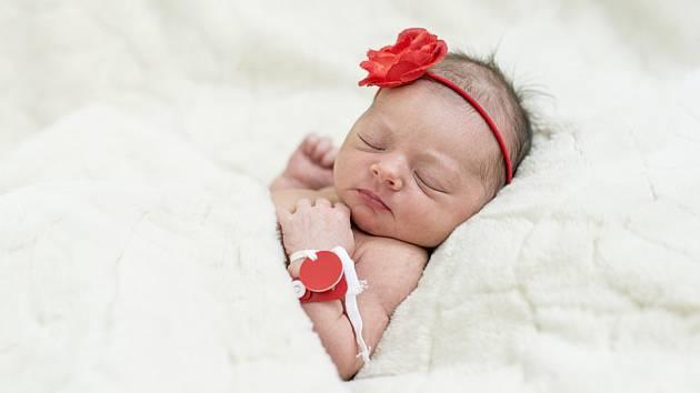 Karolína Ředinová se narodila Heleně Šťástkové a Janu Ředinovi z Rohatců 20. června v 21.17 hodin v Roudnici n. L. (49 cm a 3,51 kg).