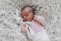 Amélie Syrová se narodila Kateřině a Liboru Syrovým z Dušníků 8. dubna v 4.59 hodin v Roudnici nad Labem. Měřila 51 cm a vážila 3,27 kg.