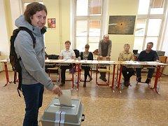 Volby v Litoměřicích doprovázela dobrá nálada.