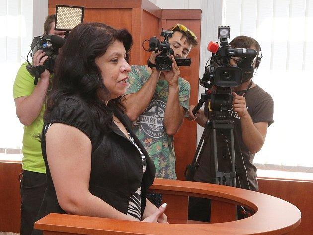 Okresní soud v Litoměřicích 10.8.2015, soudní spor mezi realitní makléřkou Eliškou Noskovou a Romkou Lenkou Balogovou.