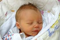 Laura Kopelentová se narodila Andree  Hingarové a Josefu Kopelentovi z Litoměřic 20.3. v 17:02 hodin v Litoměřicích (2,86 kg a 47 cm).