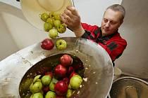 Vůně jablečné šťávy plní v těchto dnech moštárnu ve Starém Týně na Litoměřicku. Na statku Michala Wagnera funguje druhým rokem.