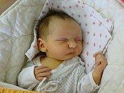 Tereza Caithamlová se narodila Andree Soukupové a Janu Caithamlovi z Bílého Újezdu 25.3. v 16:41 hodin v Litoměřicích (3,68 kg a 54 kg).