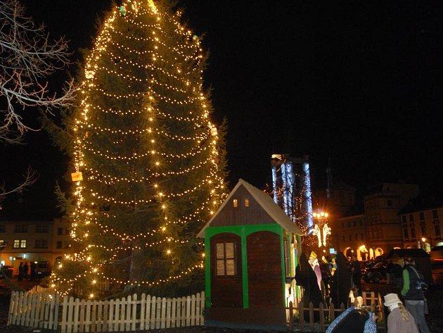 Vánoční strom v Litoměřicích.