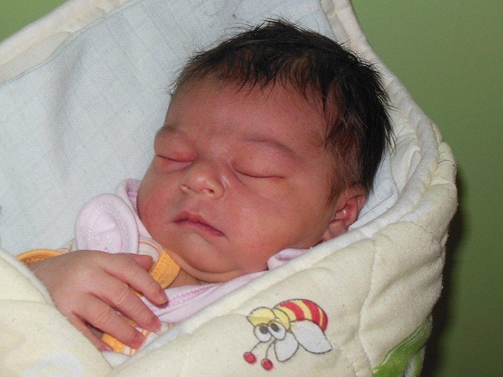 Soně a Pavlu Netolickým z Ústí nad Labem se 5.11. v 15.51 hodin  narodila v Litoměřicích dcera Anežka Netolická (51 cm, 3,69 kg).