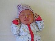 Adriana Biolková se narodila Nikole a Radomíru Biolkovým z Litoměřic 6. února 2019 v 5.51 hodin v Litoměřicích (50 cm a 3,35 kg).