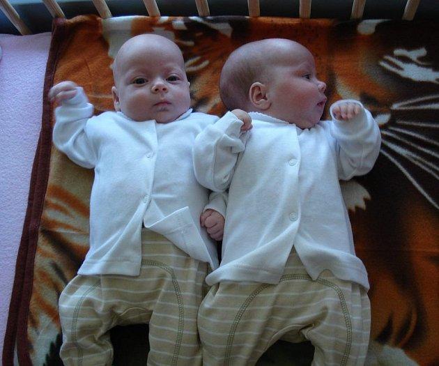 Martině a Lukáši Pavlíkovým ze Mšeného–lázní se v roudnické porodnici 26. března narodila dvojčátka. V 18 hodin Antonie Pavlíková (45 cm a 2,5 kg) a v 18.10 hodin Magdaléna Pavlíková (44 cm a 2,3 kg). Blahopřejeme!