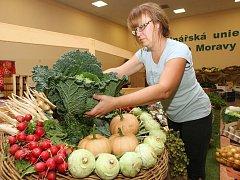 Zahrada Čech očekává až 90 tisíc návštěvníků
