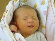 Amálie Šebestová se narodila Aleně Jaršové a Lubomíru Šebestovi z Čížkovic  10.9. v 20.32 hodin v Litoměřicích (3,05 kg a 50 cm).