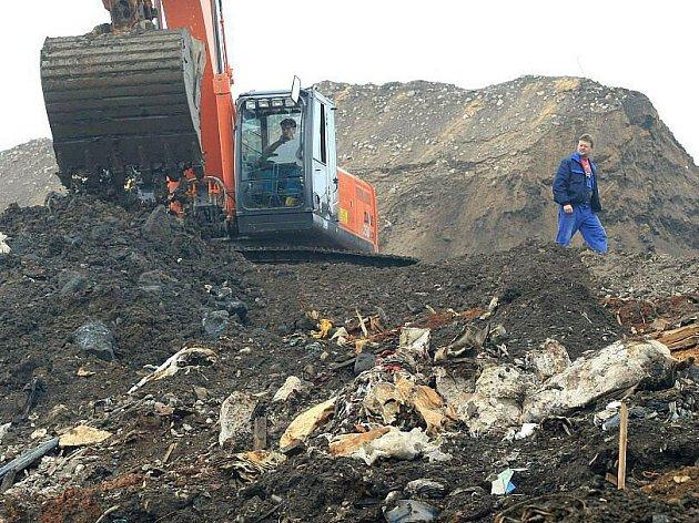 NA SKLÁDCE ve Vrbičanech probíhá v současnosti rekultivace. Těžká technika brázdí skládku denně až do odpoledních hodin a přizpůsobuje její povrch projektu rekultivace. Odpadky se tak skryjí pod zeminu a suť. Vše uzavře folie a povrch pokryje zeleň.