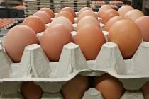 K vážnému napadení politiků u nás dosud nedošlo. Ti sami odhadují, že přinejhorším dostanou vejcem nebo rajčetem. Spíše létají nadávky. Ilustrační foto