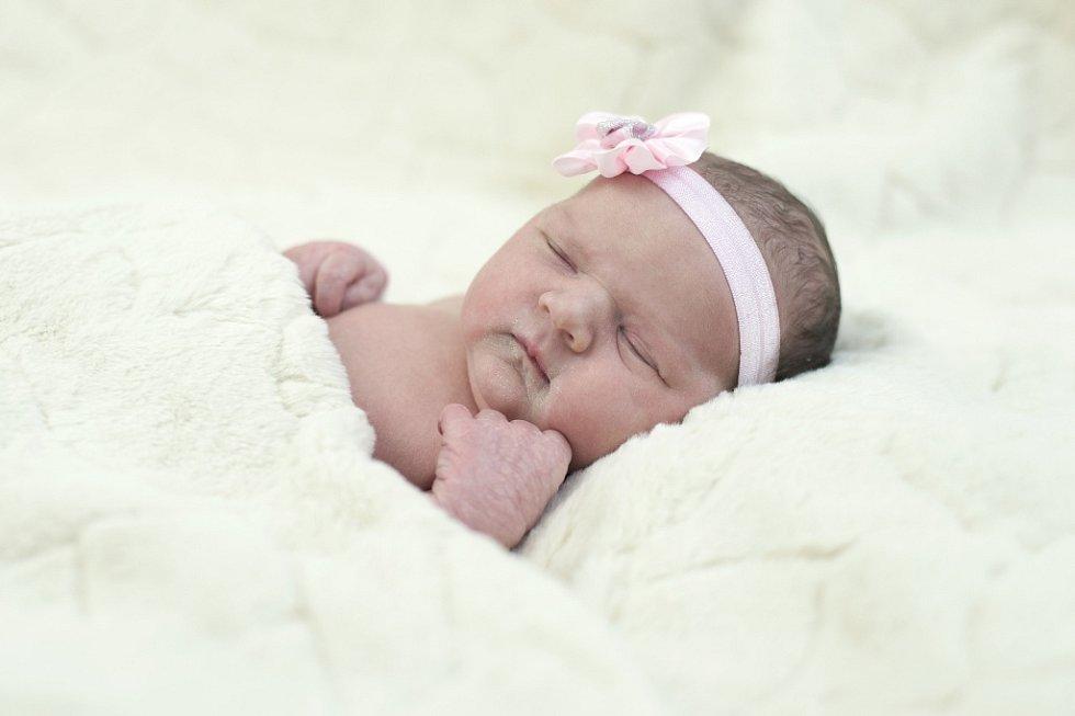 Adéla Křičková se narodila  Kateřině a Petru Křičkovým ze Štětí 12.1.  v 23:58 hodin v Roudnici n.L. (3,3 kg a 47 cm).