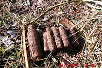U Travčic našel hledač pokladů téměř 100 kusů munice