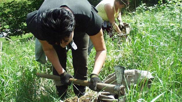 Pracovníci odborných firem během letošního jara vysadí v lesích podniku Lesy ČR na Litoměřicku 93 hektarů, z nichž je už vysazeno více než 67 hektarů.