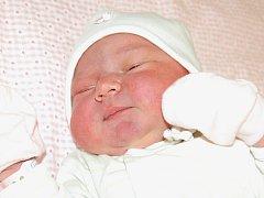 Kateřině Hájkové a Petrovi Harnischovi z Mostu se 13.11. v 11.22 hodin narodila v Litoměřicích dcera Adele Harnischová (51 cm, 3,68 kg).
