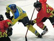 Ze zápasu druhé hokejové ligy Nymburk - Litoměřice (4:2)