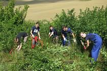 Všichni členové týmu byli vybaveni vhodným nářadím, aby byla práce co nejefektivnější.