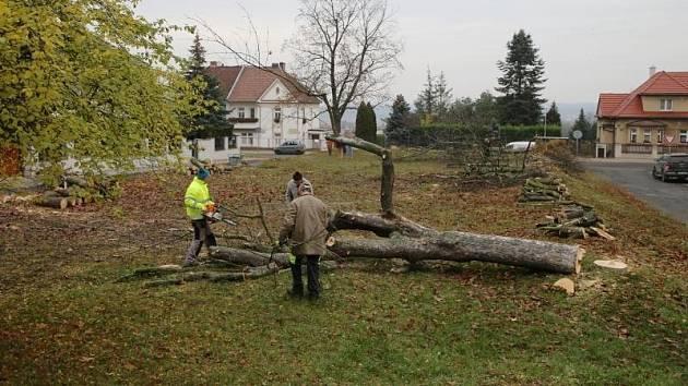 Kácení usychajících dřevin na Smetanově náměstí v Roudnici nad Labem