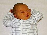 Vítek Urban se narodil Andree Urban Ludwigové a Michalu Urbanovi z Třebenic 5. listopadu 2018 v Litoměřicích (3,84 kg a 52 cm).
