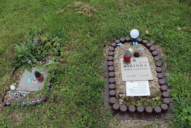 Zvířecí hřbitov na úpatí hory Říp u Vražkova.