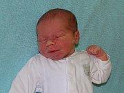 Viktor Petrák se narodil Kláře Engelhartové  a Jiřímu Petrákovi z Hoštky 22.11. v 14.09 hodin  v Litoměřicích.  Měřil 50 cm a vážil 3,05 kg.