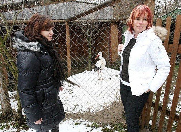 Záchranná stanice pro handicapovaná zvířata Falco v Dolním Týnci.
