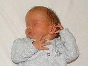 Lukáš Opava se narodil Pavle Neprašové a Lukáši Opavovi z Litoměřic 18. prosince v 11.10 hodin v Litoměřicích. Měřil 49 cm a vážil 2,85 kg.