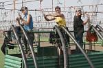 """POMOC STUDENTŮ. Na chmelnicích v okolí Polep, které obhospodařuje společnost Chmel """"Polabská blata"""", jsou v těchto dnech vidět vysokoškolští studenti z Brna."""