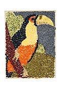 Mozaika ze semínek
