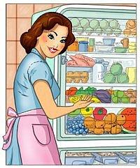 Organizace lednice