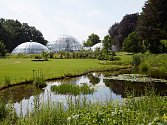 Botanická zahrada v Curychu