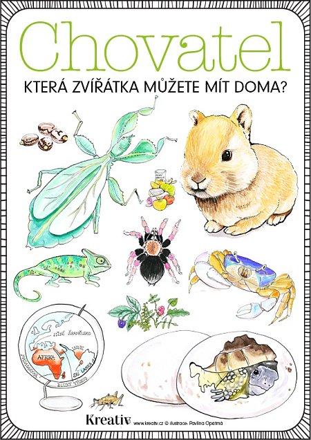 časopis1