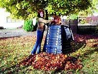 Živý poklad: Kompost