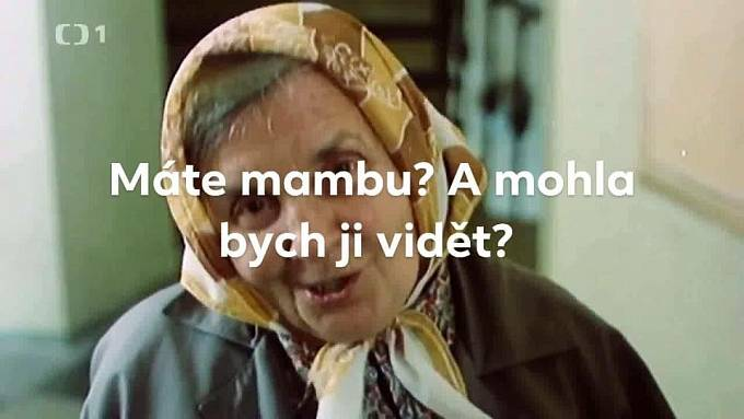 Jeden z nejpoužívanějších českých memů posloužil i tady