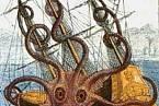 Obří hlavonožec údajně spatřený u pobřeží Angoly