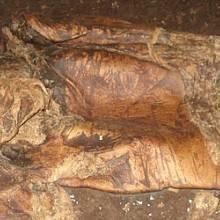 Lindowský muž. Tělo patrně druidského prince z Irska, zvaného Lovernius, bylo nalezeno v roce 1984 v rašeliništi u Manchesteru v Anglii. Také on byl obětován, dokonce trojím usmrcením. Muž zemřel kolem roku 60 n. l.
