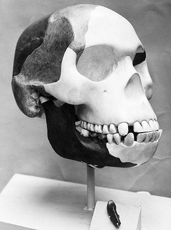 Pittdownský podvod. V prosinci 1912 nalezl amatérský archeolog Charles Dawson u anglického Sussexu fosilie, které se tvářily jako dlouho hledaný článek mezi opicí a člověkem. Jenže roku 1953 se prokázal podvod. Nevinný vtip se prý autorovi vymkl z rukou.