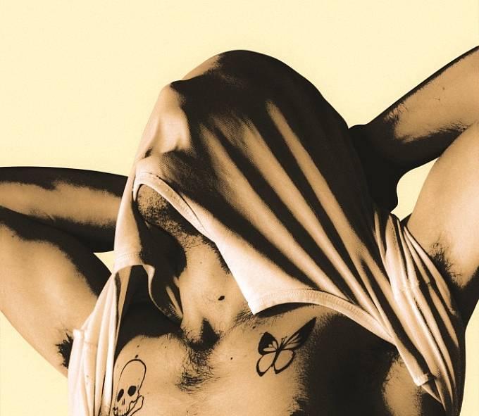 Filmový plakát ke snímku Nová kůže