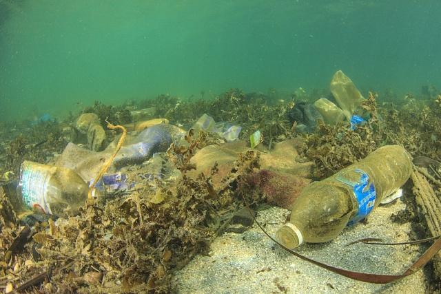 Nejen moře, ale ijezera a řeky jsou zanesené plastem.