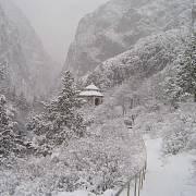 Západní část pohoří Ťan-šan (Kazachstán, Kyrgyzstán, Uzbekistán) byla na seznam přidána kvůli bohaté biodiverzitě především místní flóry. Mimochodem název pohoří se překládá jako Nebeské hory nebo Hory duchů.