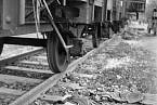 Tyfu se báli nejen vězni, ale i nacističtí dozorci táborů