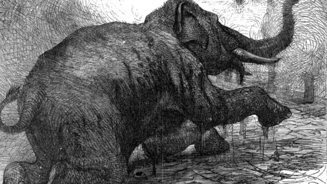 Sloni byli používáni jako zbraň k rozdrcení