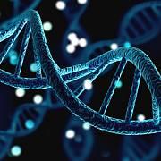 Co DNA vypovídá o našem původu?