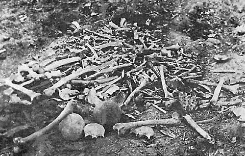 Armenská genocida (1915-1918)