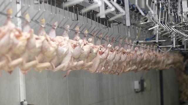 K nejdotovanějším potravinářským fabrikám patří Babišova Vodňanská drůbež.