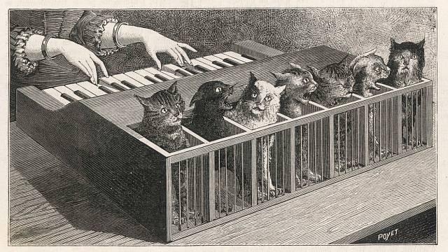 """Vpadesátých letech 16. století sloužilo """"kočičí piano"""" jako legendární muzikoterapie."""
